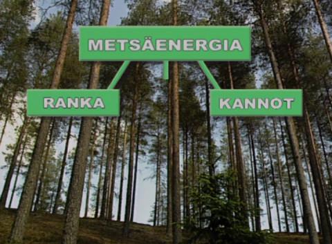 OhjelmaEsittely, energiapuun hankinta